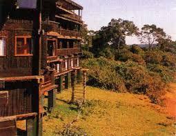 serena mountain lodge kenya