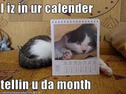 lol cats calendar