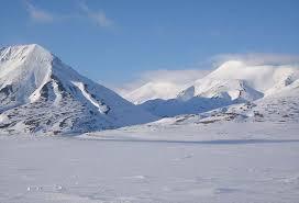 arctic picture