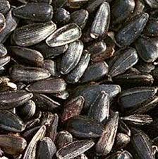 millet bird food