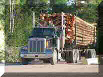 peterbilt log trucks