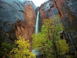 zion national park picture