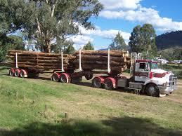 logging truck pictures
