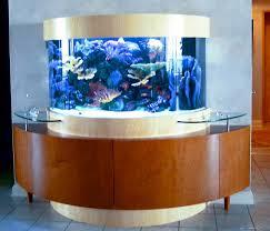 custom fish aquariums