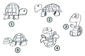 draw a turtle