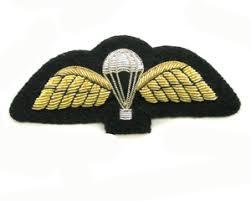 parachute wing
