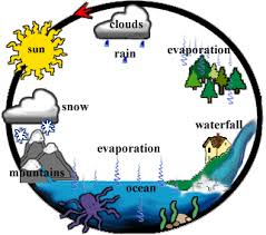 diagram of a water cycle