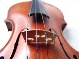violin string order