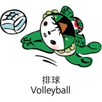 beijing 2008 volleyball