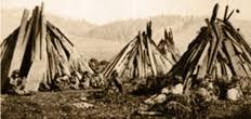 pomo indians houses