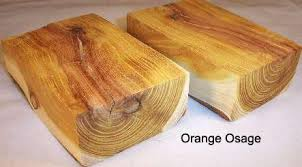 osage orange wood