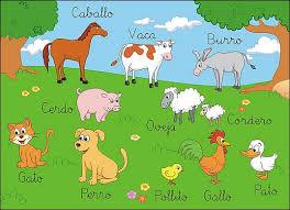 animales fotos