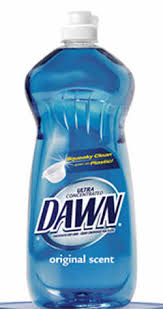 dawn dishwashing