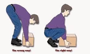 back ergonomics