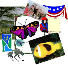 collage clip art