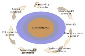 gestion por competencias