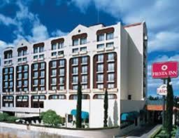 chihuahua hotel