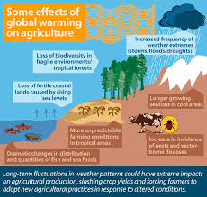 global warming agriculture