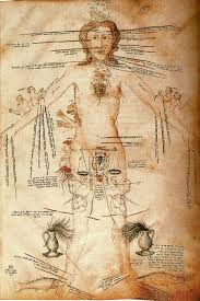 all human body parts