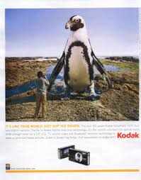 digital camera adverts