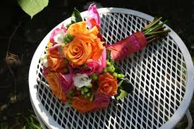 pink and orange roses