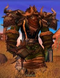 level 80 druid