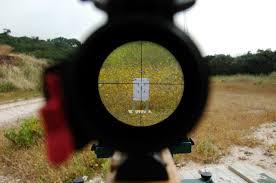 air rifles hunting