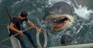 jaws pictures