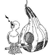how to build bird houses