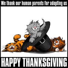 thanksgiving t shirt
