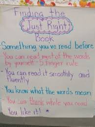just right book