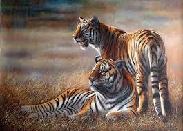 animal oil paintings