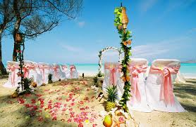 beach wedding picture