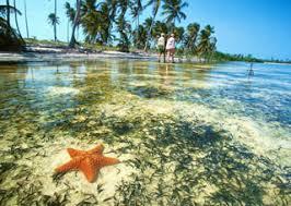 playas en yucatan