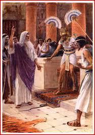 Die Verstockung des Pharaos - Seite 3 Aaron_snake