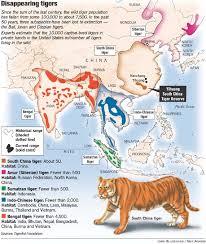 habitat tiger