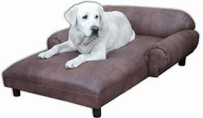 dog beds furniture