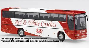 red and white buses