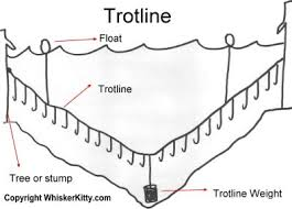 catfish trotline