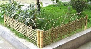 bamboo garden borders