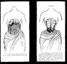 corset body