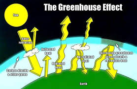 greenhouse effect carbon dioxide