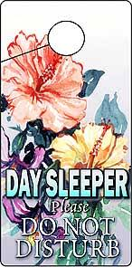 day sleeper