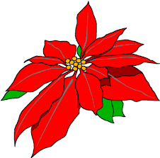 poinsettias clipart