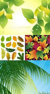 illustrator vector download
