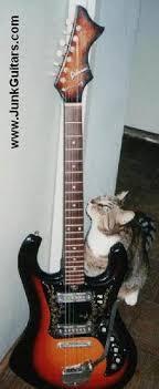 sekova guitars