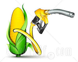 Food or Biofuel Illustration Of A Yellow Gas Nozzle Emerging From A Yellow Corn Biofuel Pump