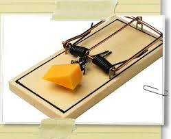 picture of mouse trap