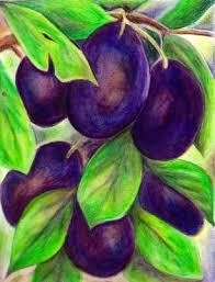 plum painting