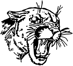cougar mascot pictures